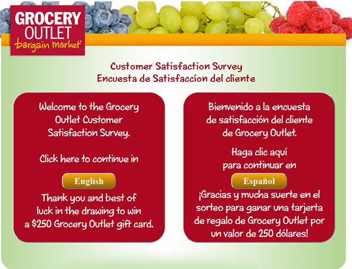 Grocery Outlet Online Survey